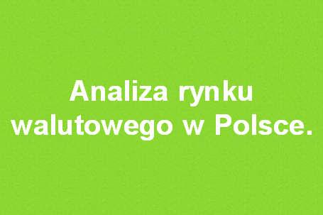 Analiza rynku walutowego w Polsce.